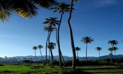 Zdjecie INDONEZJA / Sulawesi (Celebes) / Ampana, okolice / ... świąteczny poranek...