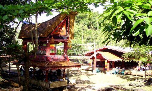 INDONEZJA / Sulawesi Południowe / okolice Rantepao / ceremonia pogrzebowa u Toradżów