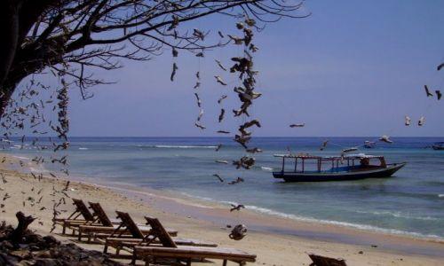 Zdjęcie INDONEZJA / wysepka Gili Air / Gili Air / plaża na Gili Air