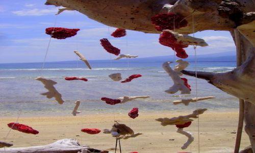 Zdjęcie INDONEZJA / Gili Air / plaża na Gili Air / inne spojrzenie ....