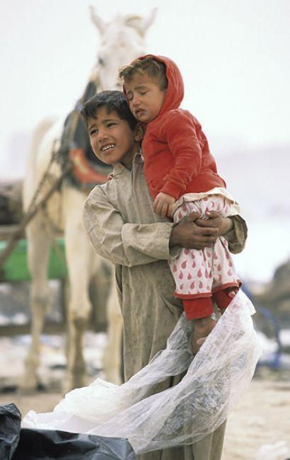 Zdjęcia: okolice Karbali, Opiekun, IRAK