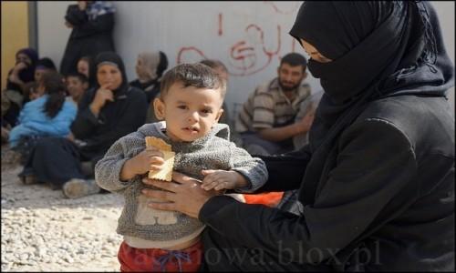 Zdjecie IRAK / Erbil / Makhmur / Uchodźcy z Mosulu 10
