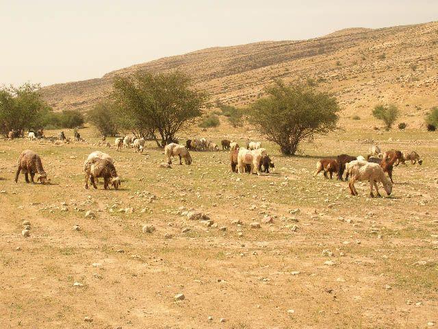 Zdjęcia: prowincja Pars, irańskie krajobrazy (15), IRAN