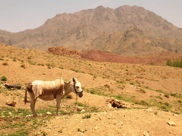 Zdj�cia: Abyaneh szczyt Karkas, ira�skie krajobrazy (36), IRAN