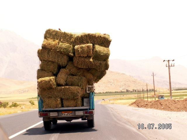 Zdjęcia: Kerman, Pickupy mogą wiele, IRAN