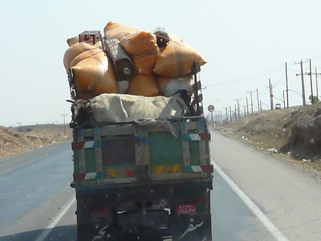 Zdjęcia: szosa Hamadan-Kermanshah, Kermanshah, dwugłowa krowa ??!!, IRAN