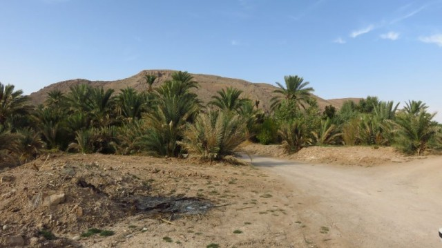 Zdjęcia: Pustynia Dasht-e Kavir, Garmeh - oaza, IRAN