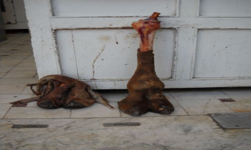 IRAN / QOM / Bazar w Qom / reklama sklepu mięsnego
