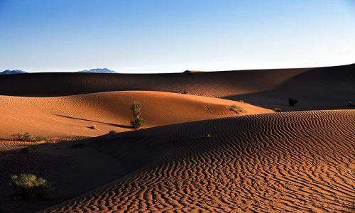Zdjecie IRAN / Yazd / pomiedzy Yazd a Mashad / na iranskiej pustyni