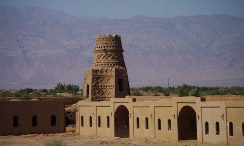 Zdjecie IRAN / - / pustynia Lut / oaza