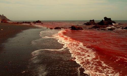 Zdjęcie IRAN / Zatoka Perska / Wyspa Hormoz / Krwawy ocean