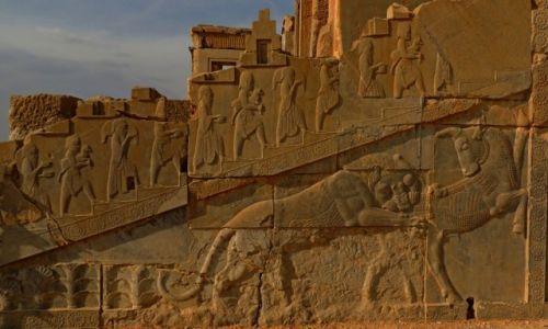 Zdjęcie IRAN / Shiraz / Persepolis / Persepolis