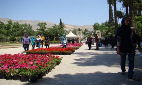 Zdjęcie IRAN / południowy Iran / Shiraz / ogród w Shirazie