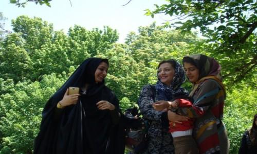 Zdjęcie IRAN / południowy Iran / Shiraz / kwiatowy ogród w Shirazie