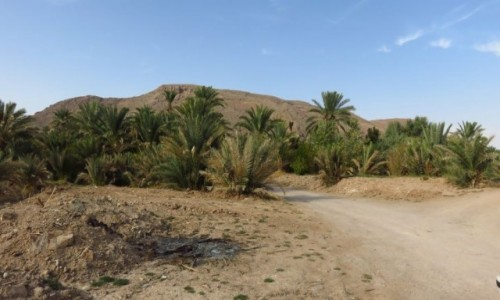 IRAN / - / Pustynia Dasht-e Kavir / Garmeh - oaza