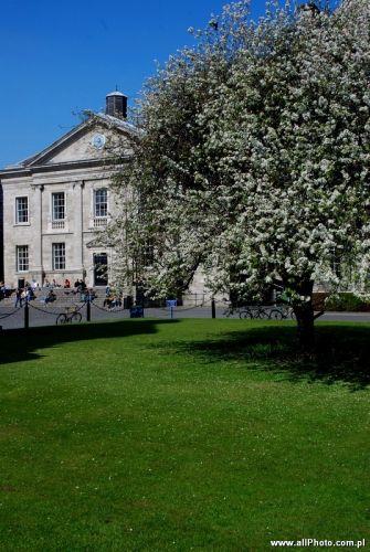 Zdj�cia: Dublin, Trinity College, IRLANDIA