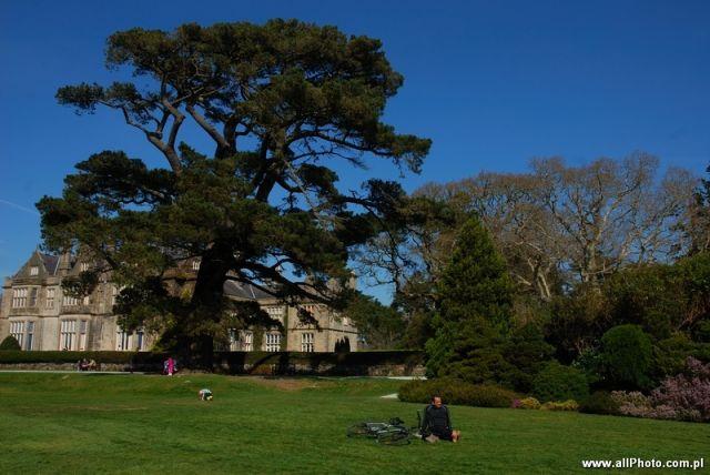 Zdj�cia: Dublin, Kerry, Muckross park, Killarney, Kerry, IRLANDIA