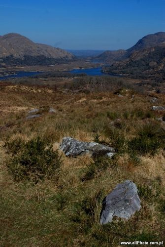 Zdjęcia: Dublin, Kerry, Killarney National Park, Kerry, IRLANDIA