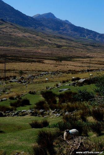 Zdj�cia: Dublin, Kerry, Kerry Peninsula, Kerry, IRLANDIA