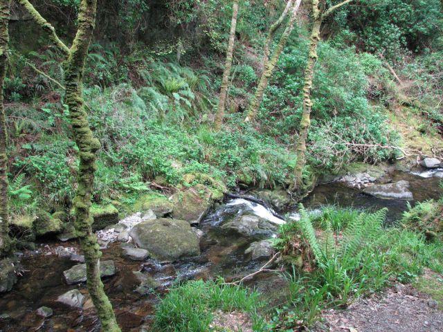 Zdj�cia: Park Narodowy Killarney, Killarney, Park Narodowy Killarney, IRLANDIA