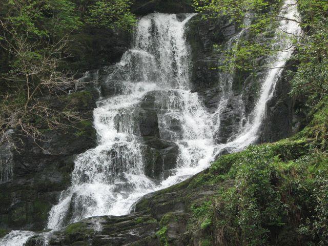 Zdjęcia: Park Narodowy Killarney, Park Narodowy Killarney, IRLANDIA