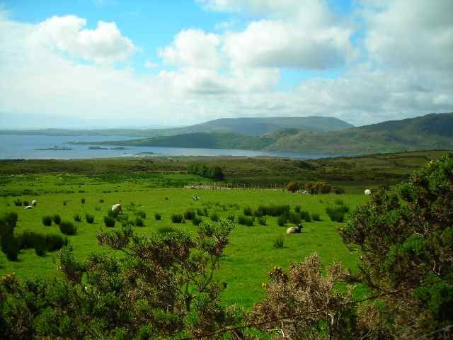 Zdjęcia: Gory Partry, Hrabstwo Mayo, Lough Mask, IRLANDIA