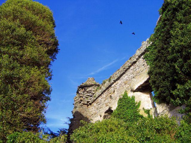 Zdjęcia: Dromineer, Hrabstwo Limerick, Ruiny XIIIw.Dromineer Castle, IRLANDIA