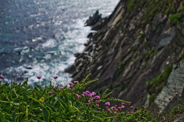 Zdjęcia: Inch, County Kerry, Inch10, IRLANDIA