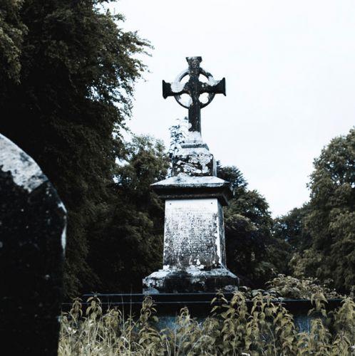 Zdj�cia: Killarney, County Kerry, Muckross3, IRLANDIA
