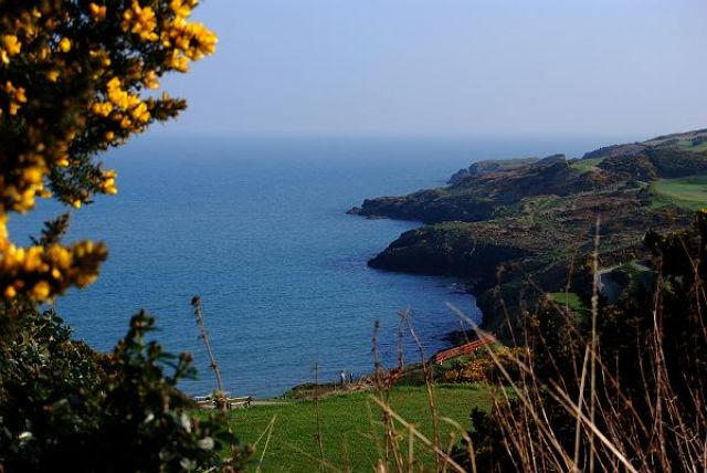 Zdjęcia: BRITTAS BAY, WICKLOW, Klify otaczające plaże, IRLANDIA