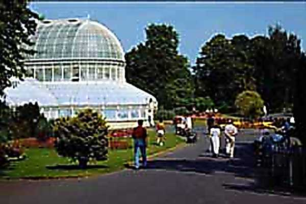 Zdjęcia: Belfast, Ogród botaniczny w Belfaście, IRLANDIA