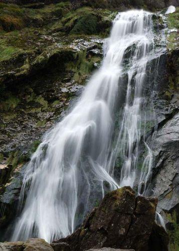 Zdjęcia: Irlandia, Powerscourt, IRLANDIA