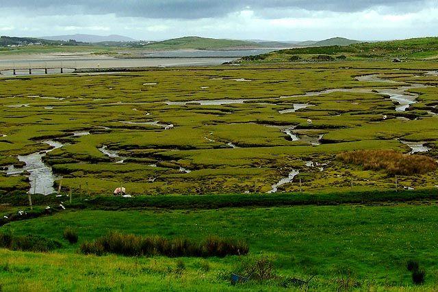 Zdjęcia: Donegal, tereny zalewowe, IRLANDIA