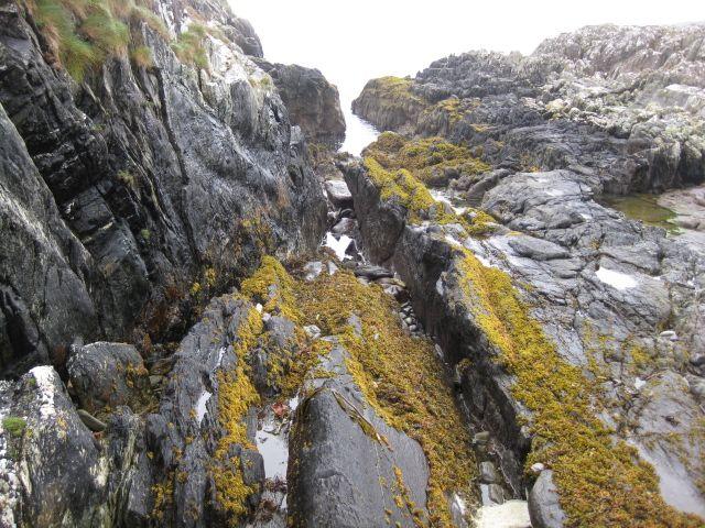 Zdjęcia: gdzieś tam... na szlaku , strach, IRLANDIA