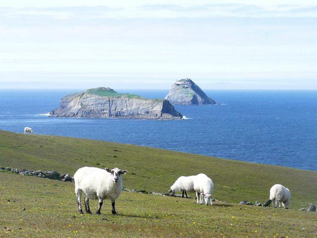 Zdjęcia: tuam, galway, c.d, IRLANDIA