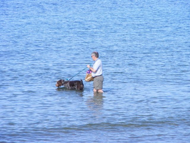 Zdjęcia: Bray, Bray, zaskoczony przez przypływ, IRLANDIA