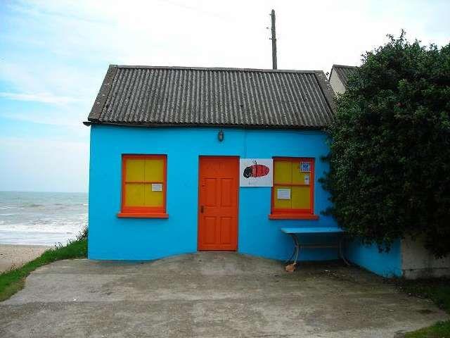 Zdjęcia: Ballymoney, Hrabstwo Wexford, Pszczolka Maja tez wyemigrowala do Irlandii..., IRLANDIA
