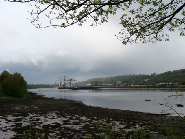 Zdjęcia: CORK,  hrabstwo Cork, Cork - rzeka Lee., IRLANDIA