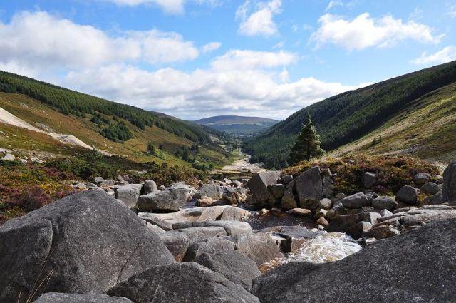 Zdjęcia: Irlandia Góry Wicklow, Góry Wicklow, IRLANDIA