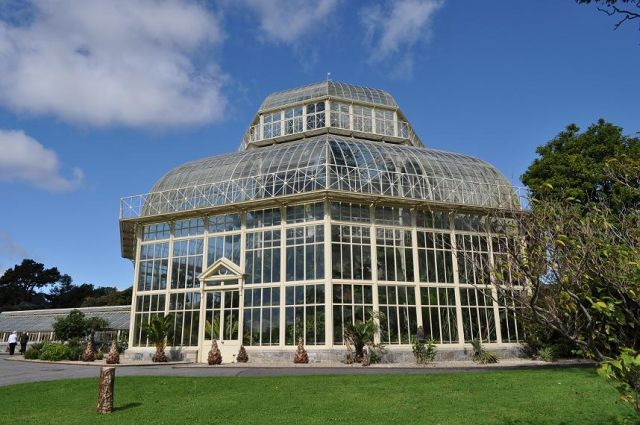 Zdjęcia: Dublin, Palmiarnia w Ogrodzie Botanicznym, IRLANDIA