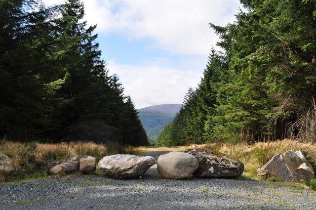 Zdjęcia: Góry Wicklow, Wycieczka w góry, IRLANDIA