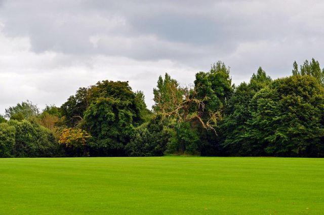 Zdjęcia: Dublin, St Anne's Park, IRLANDIA