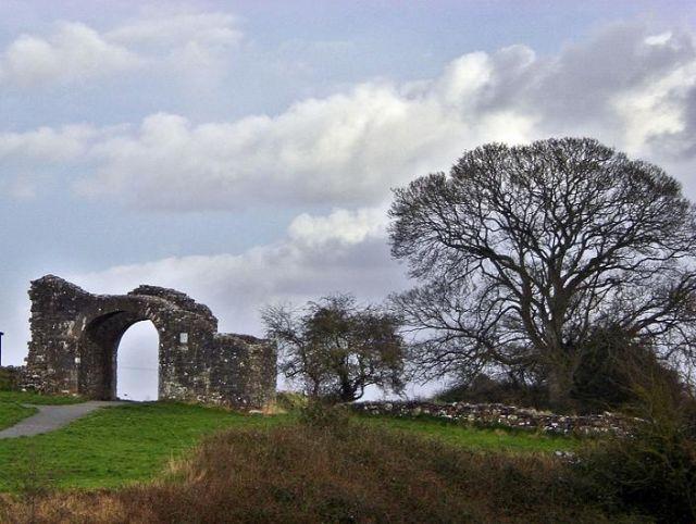 Zdjęcia: Trim, Meath, Ruiny, IRLANDIA