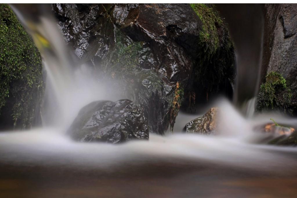 Zdjęcia: Rostrevor, County Down, Strumyk, IRLANDIA