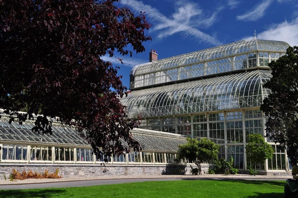 Zdjęcia: Dublin, Dublin, W Ogrodzie Botanicznym, IRLANDIA