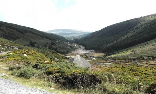 Zdjecie IRLANDIA / brak / Wicklow Mountains / Wicklow Mountai