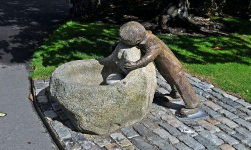 IRLANDIA / - / Dublin Botanic Garden's / Poidełko