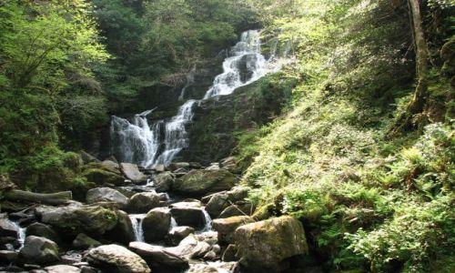 Zdjęcie IRLANDIA / brak / Park Narodowy Killarney / Park Narodowy Killarney