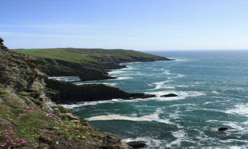 Zdjecie IRLANDIA / Kinsale / Kinsale / Klify Old Head
