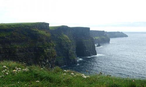 Zdjecie IRLANDIA / clare / cliffs of moher / klify